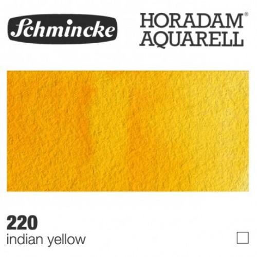 Giallo Indiano - 220