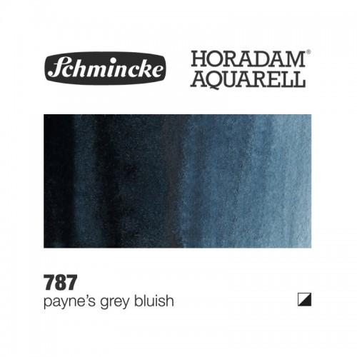 Grigio di Payne Bluastro - 787